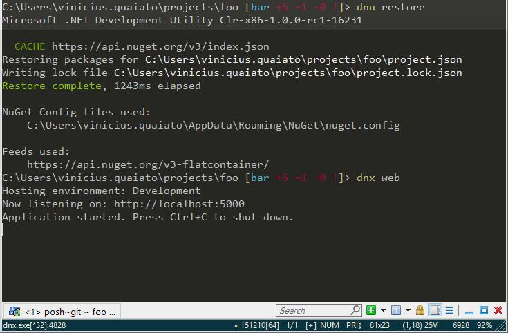 atualizando com dnu restore e rodando com dnx web