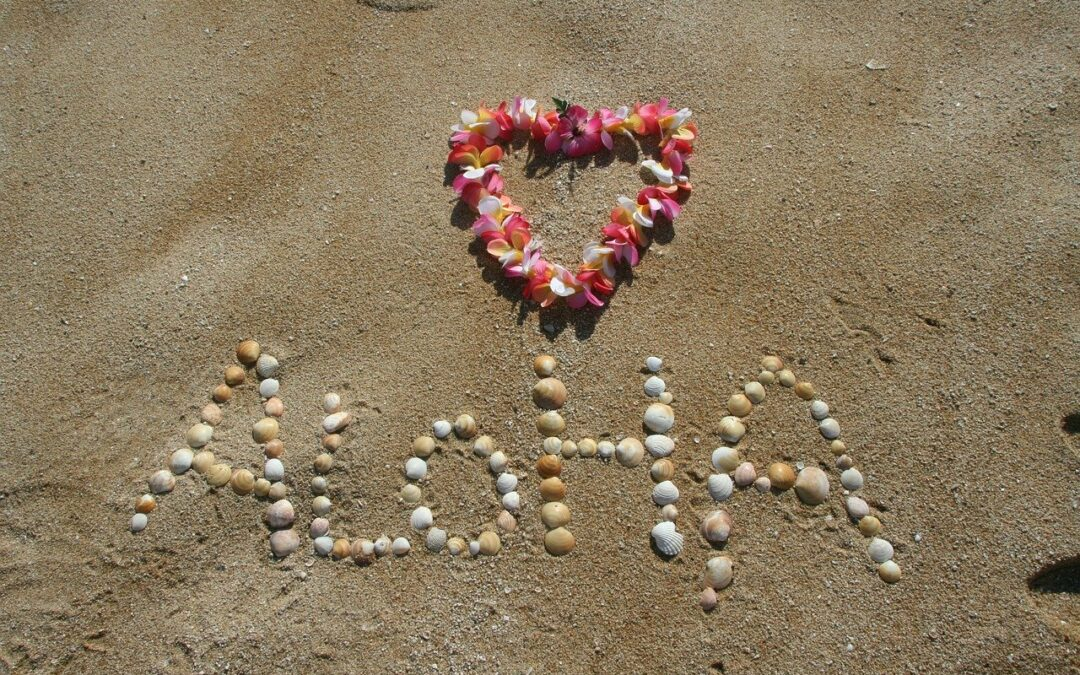 Bem vindo ao Havaí: O novo .NET MAUI